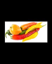Chilli Habanero Mix 50gr /Chili mix 50g - NLD - TK