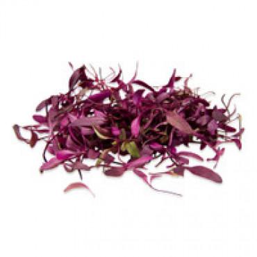 Lilla mangold ehk lilla lehtpeet 100g