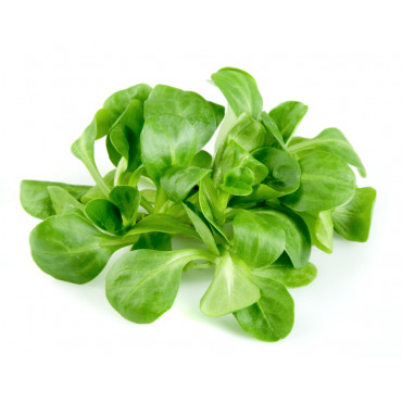 Põldsalat (lambsalat) 100g
