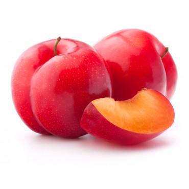 Ploom punane