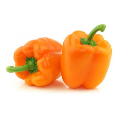 Oranž paprika
