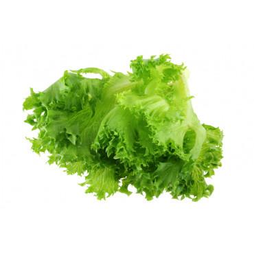 Frillice salat pakis