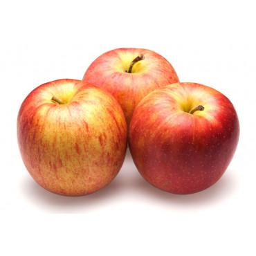 Õun Royal Gala