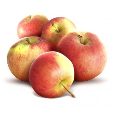 Eesti õun Krista